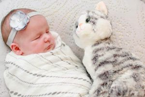 baby and cat stuffed animal